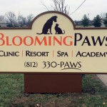 lighted-sign-bloomingpaws